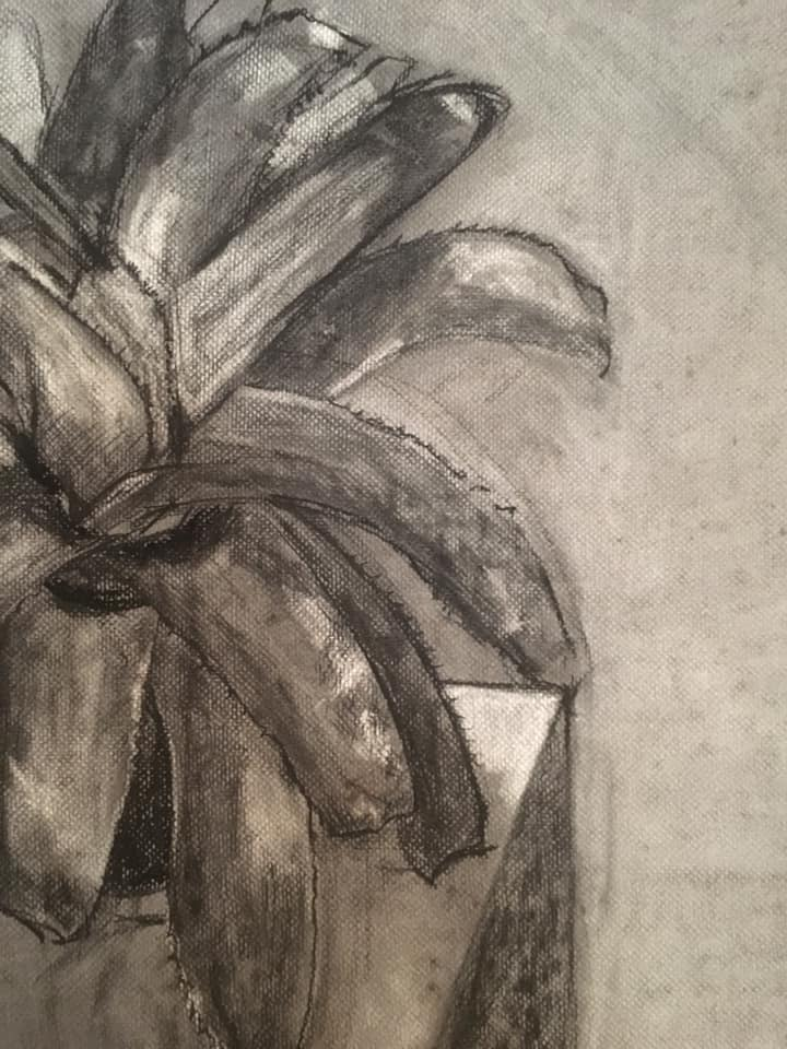 "A closer look at works from the showcase, ""And This Is What I Will Do"" by Jodi Minnis. Medium: charcoal."