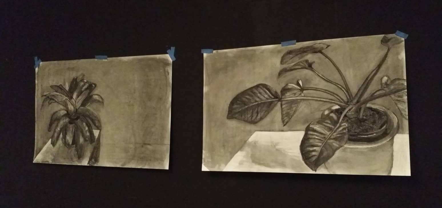 "A comprehensive view of works exhibited in the showcase, ""And This What I Will Do"" by Jodi Minnis. Medium: charcoal."