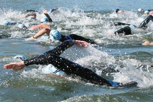 EliteSwimmingWebCrop.jpg