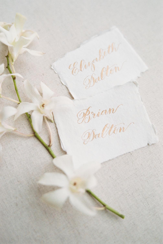 Dalton-Wedding-Shannon-Skloss-Photography-Omni-Fort-Worth-13.jpg