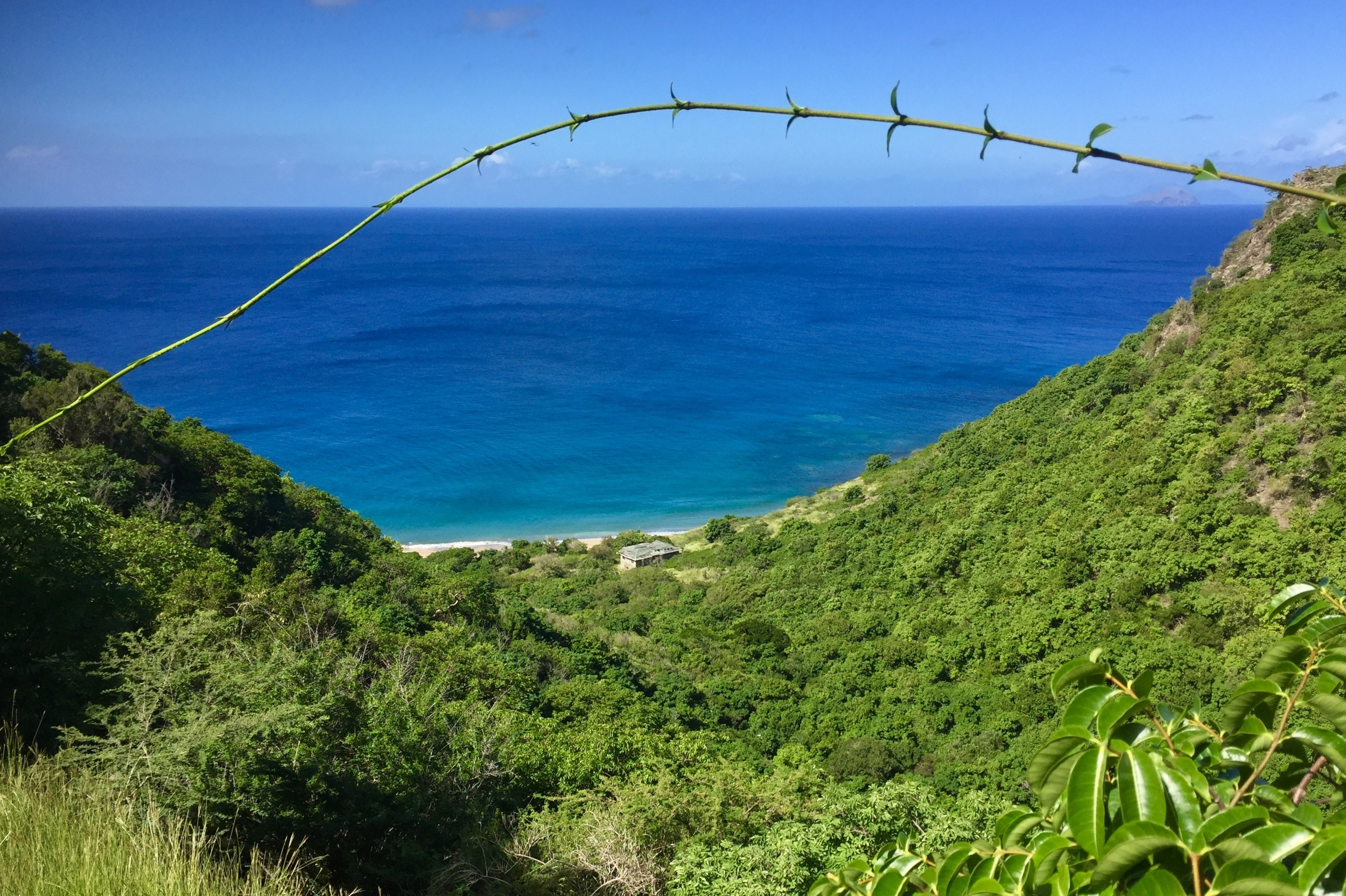 On the northwest side of Montserrat, Rendezvous Bay can only be reached by boat or on foot (Photo by Andrew Evans)