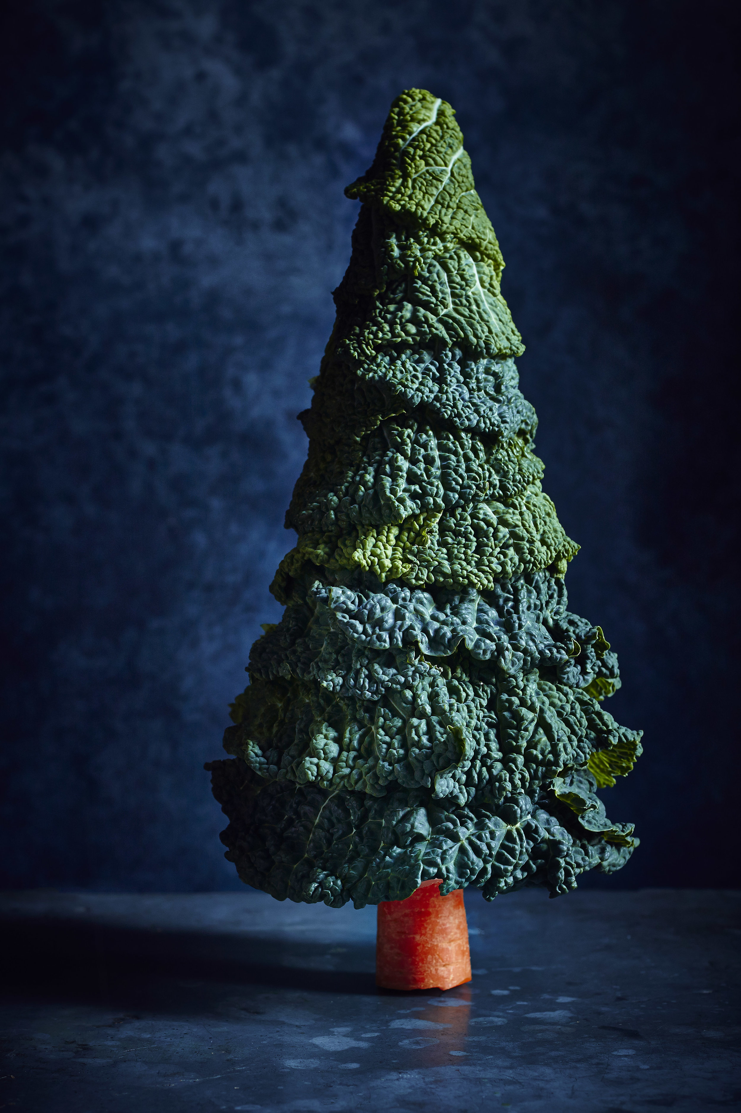 CabbageChristmasTree.jpg