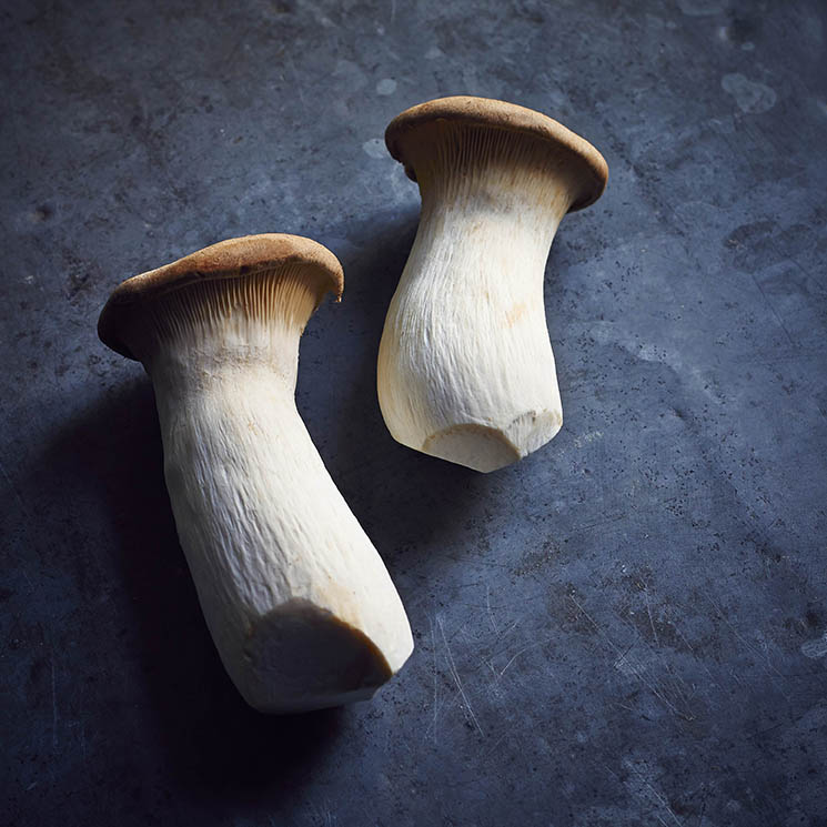 Mushroom_Porcini.jpg