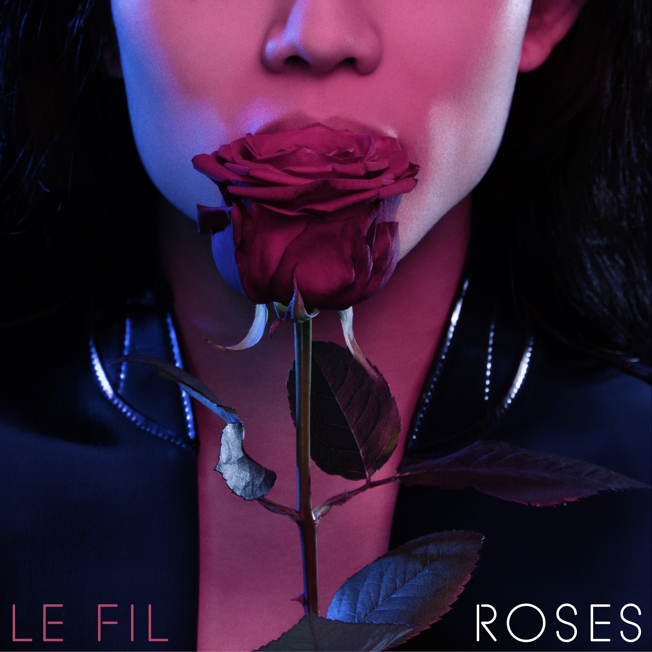 Roses+Cover+web+ready+150+36x36.jpg