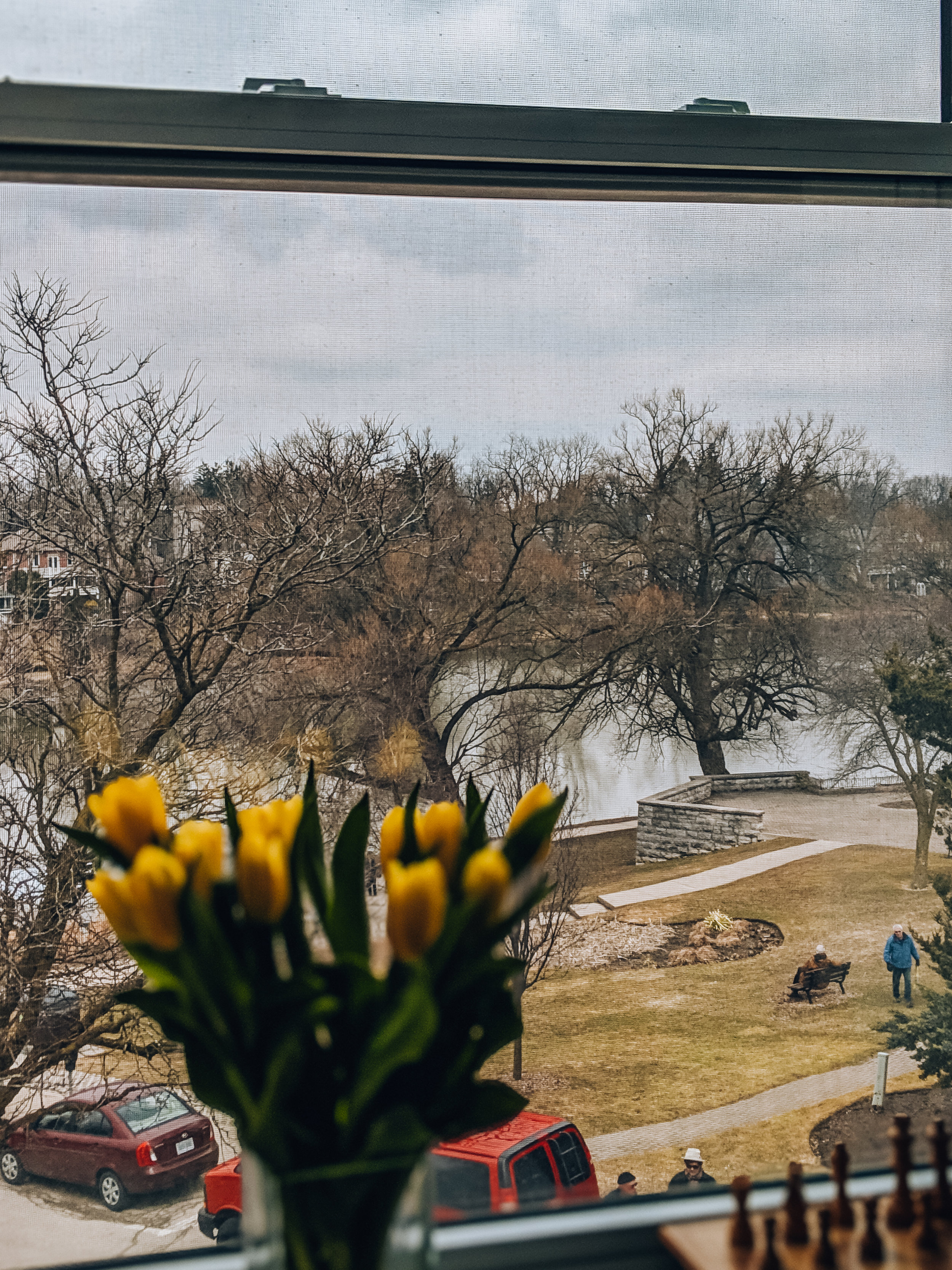 View from The Music Suite, Edison's Inn