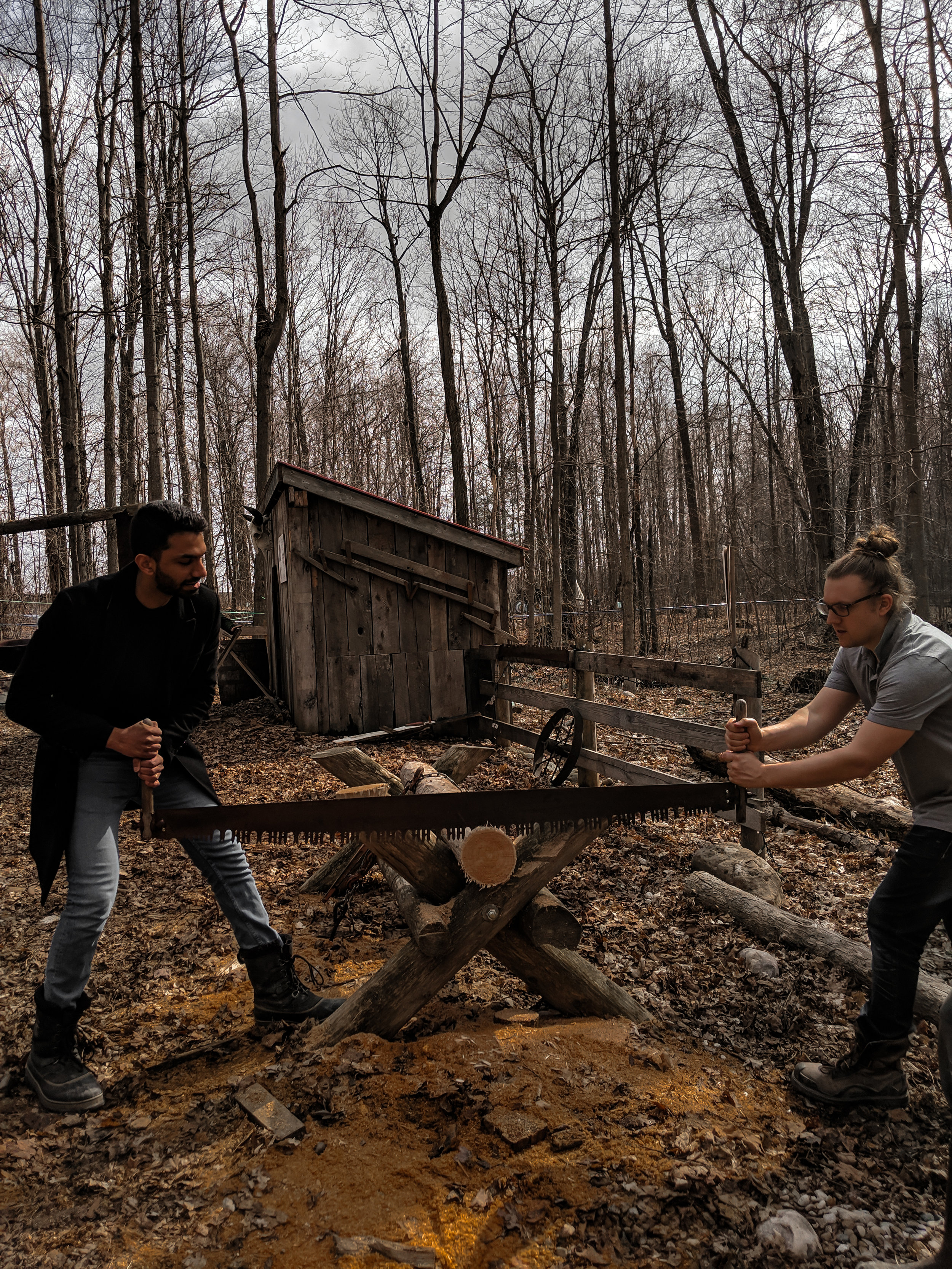 Sawing and branding logs