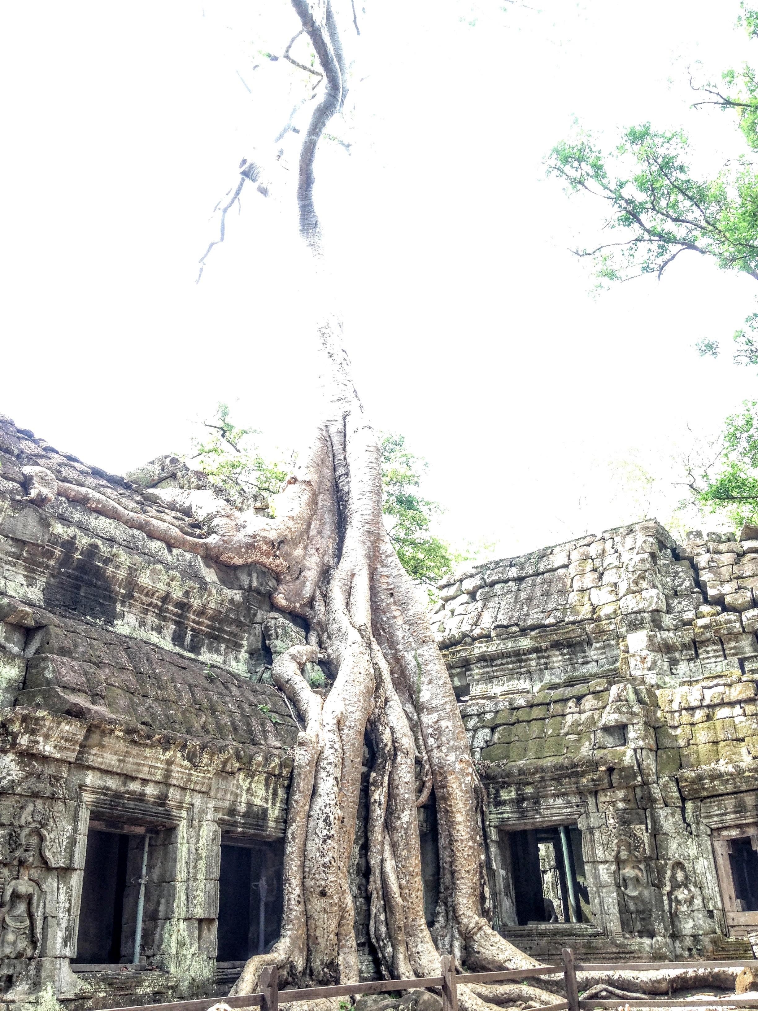 Siem Reap - 77 of 127.jpg