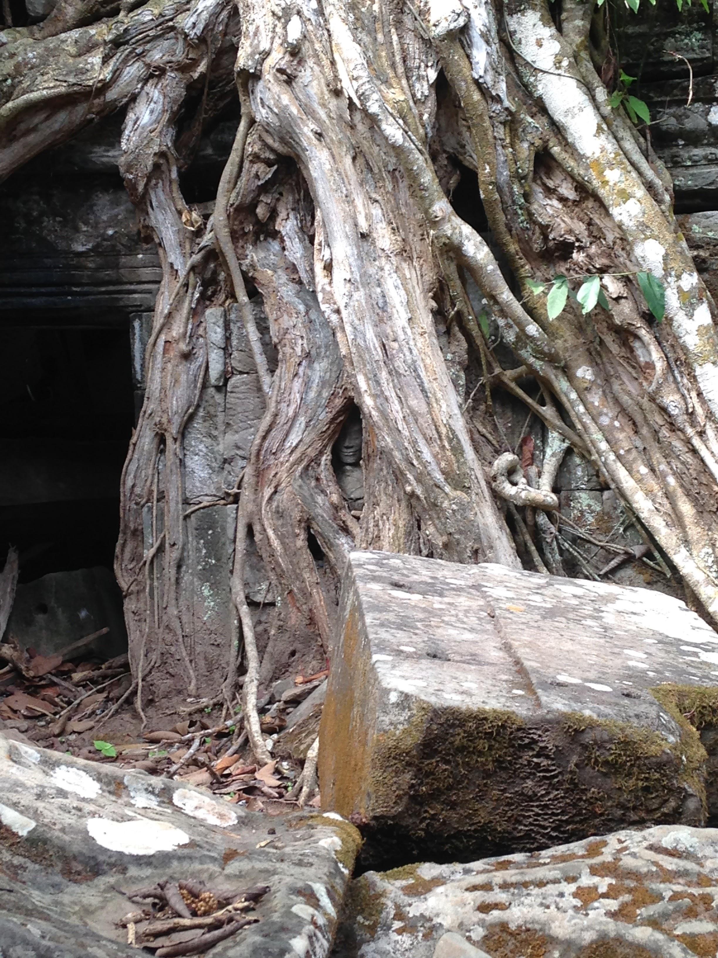 Siem Reap - 80 of 127.jpg