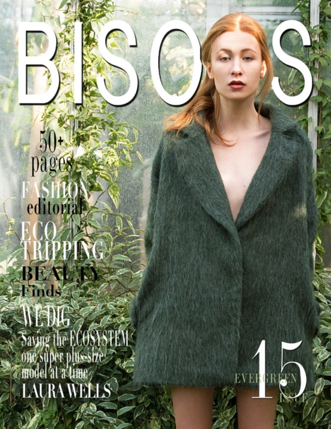 BISUS WINTER 2015.jpg