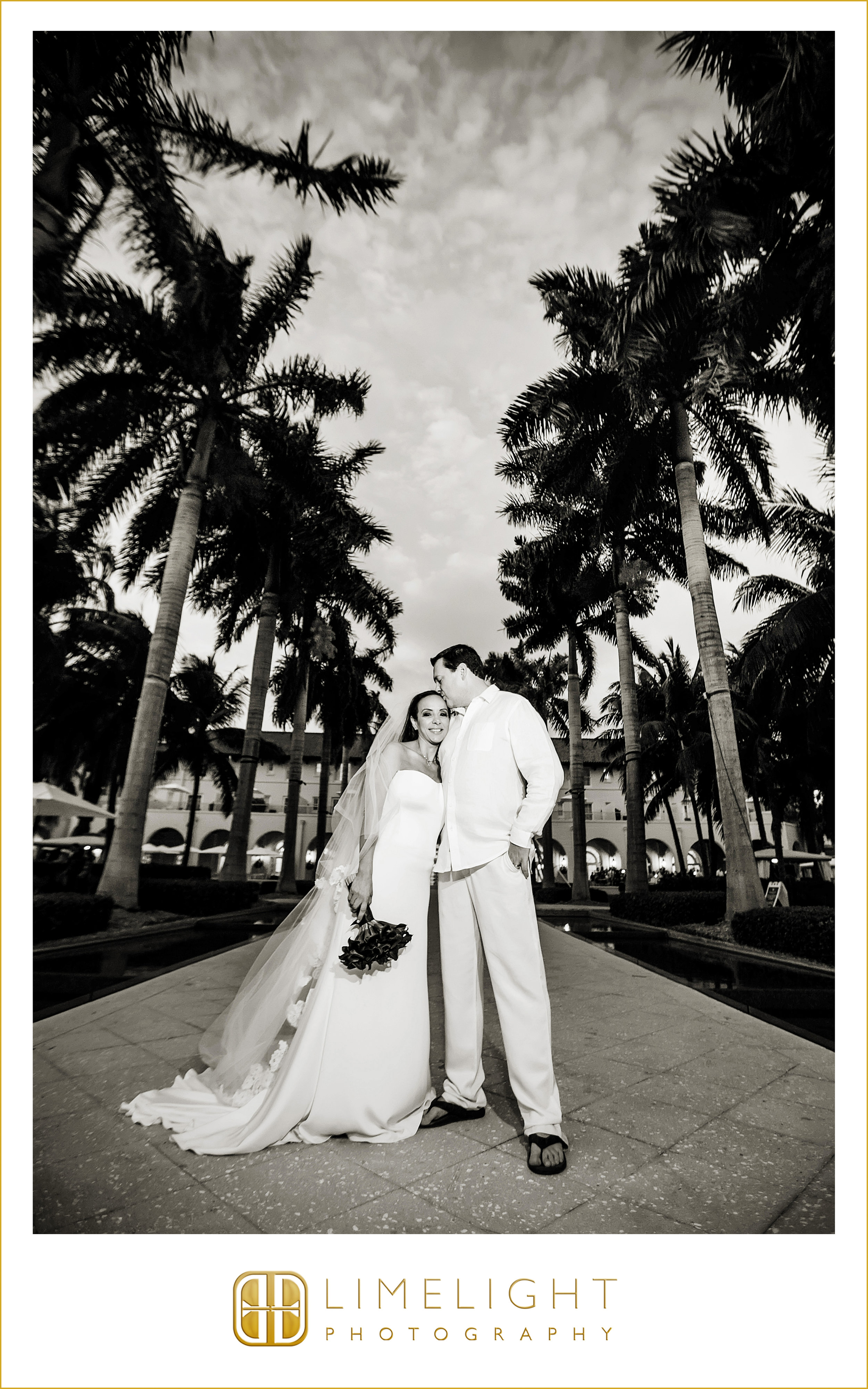 Kiss | Palm Tree | Wedding