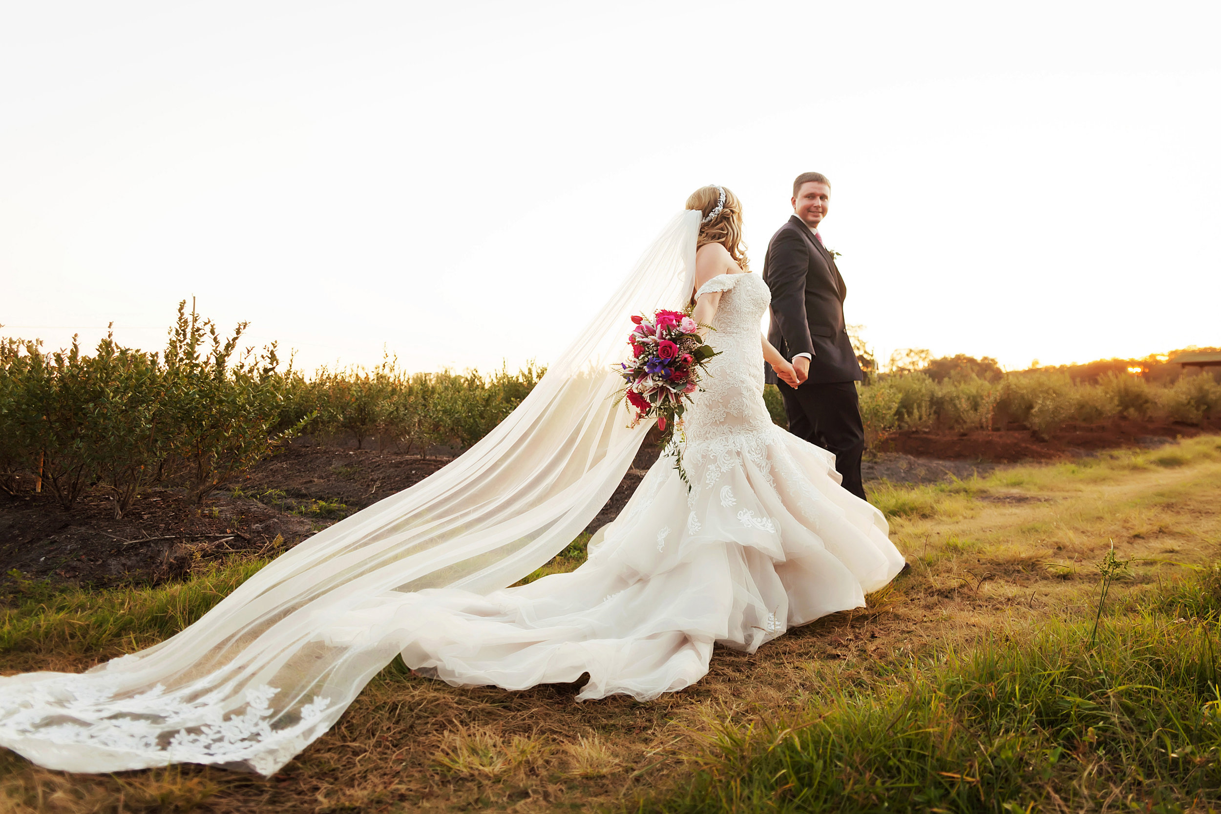 indigo harvest events, barn wedding, pink roses, romance, lace veil, flowing train wedding gown, wedding photography, limelight photography