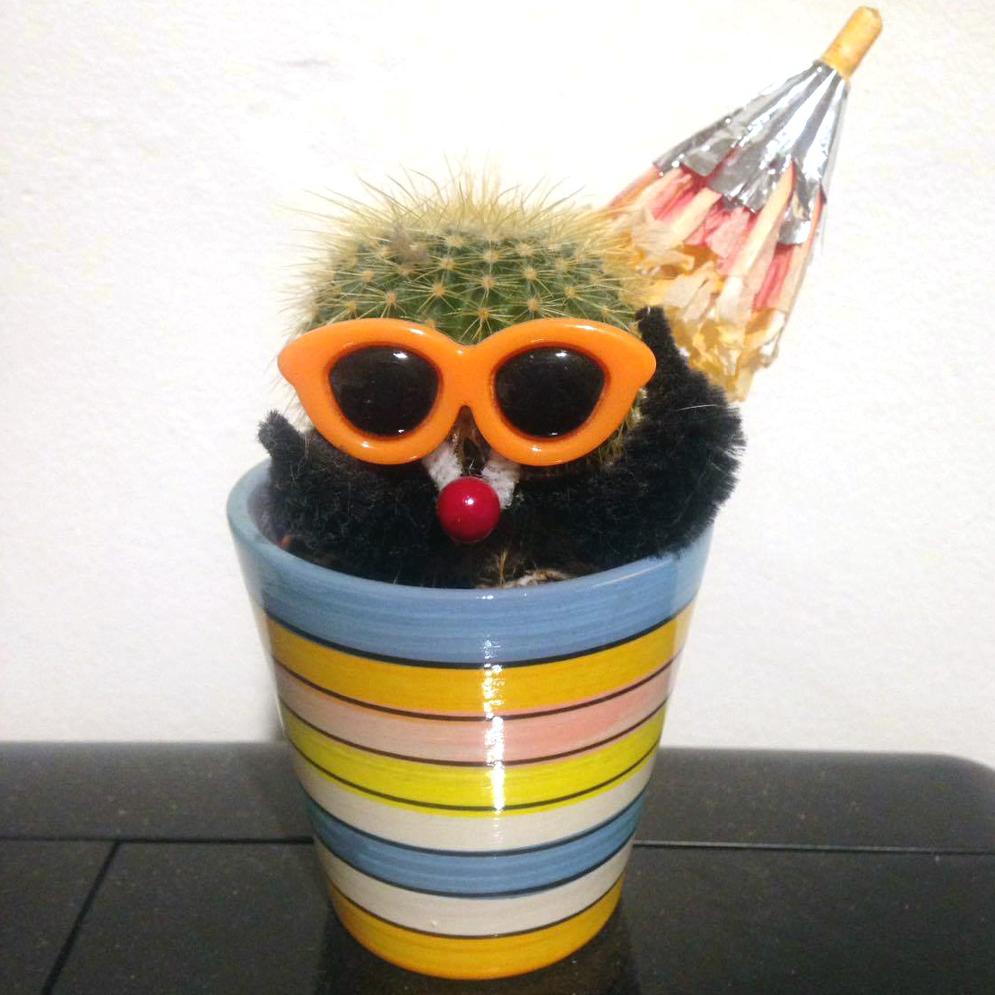 Part Cactus with stripey container and sunglasses.