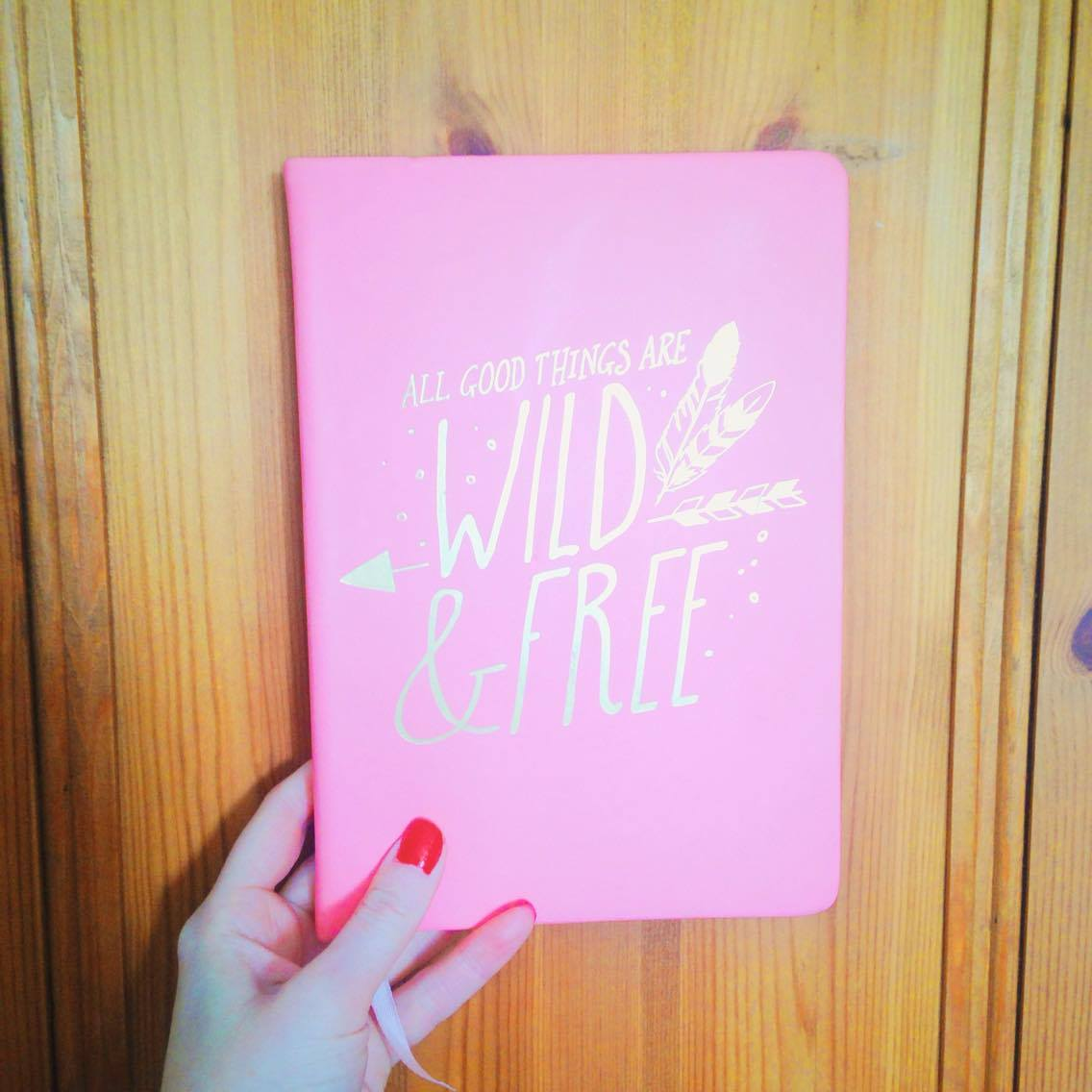 'All Good Things Are Wild & Free' notebook from TKMaxxx.