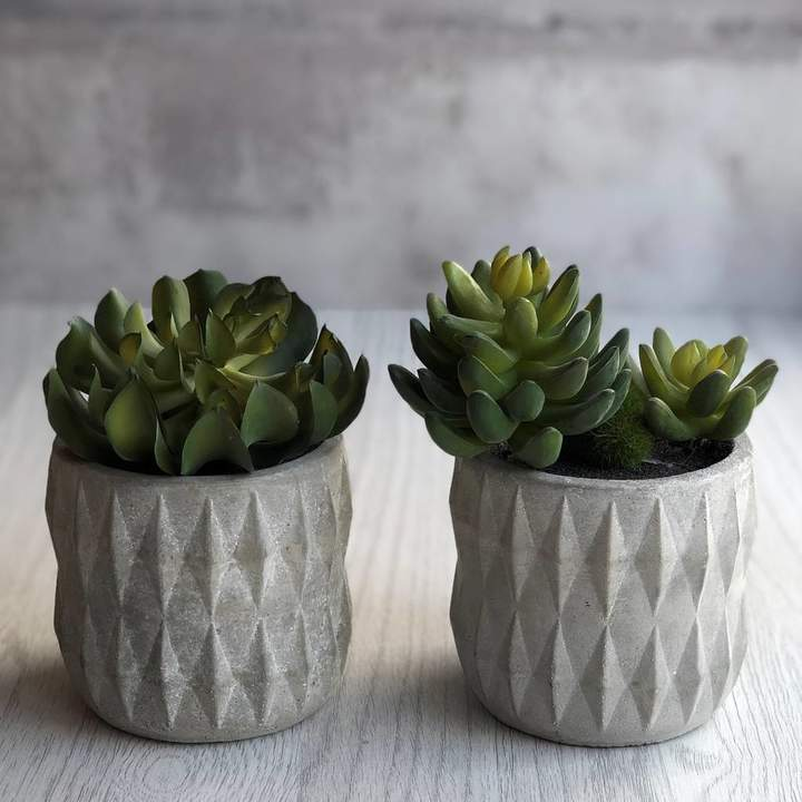 Geometric Succulent Holder