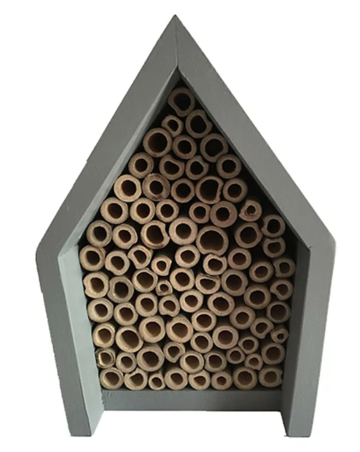 Insect house - £7.00 George at Asda*