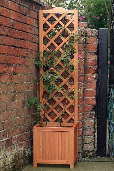 Square planter with trellis - £45 Dunelm