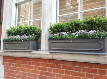Window plant box - £49.99 Wayfair