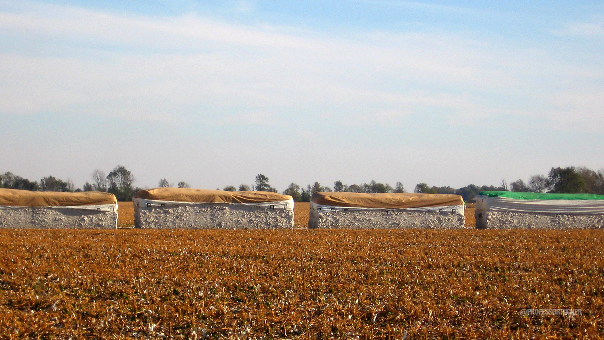 2005_ISU Studio_Clarksdale Rural Cotton Bales.jpg