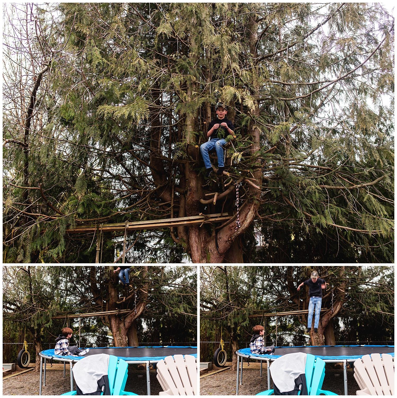 tree climbing family documentary.jpg