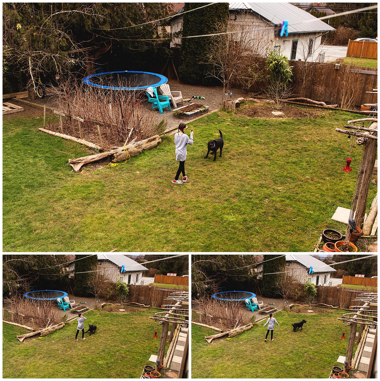 family documentary backyard.jpg