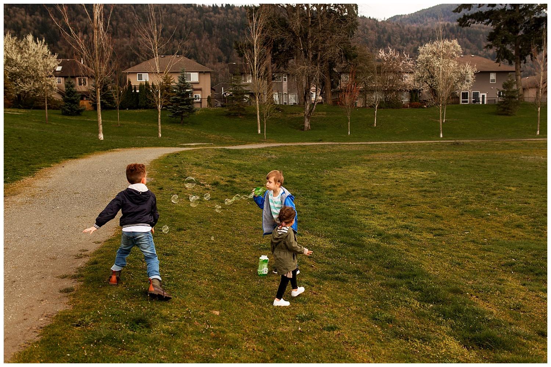 Chilliwack play park.jpg