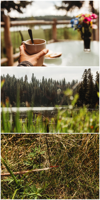 Fawn Lake_13.jpg