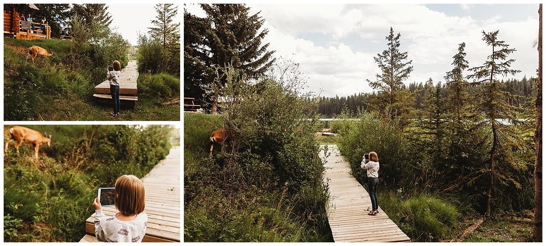 Fawn Lake_29.jpg