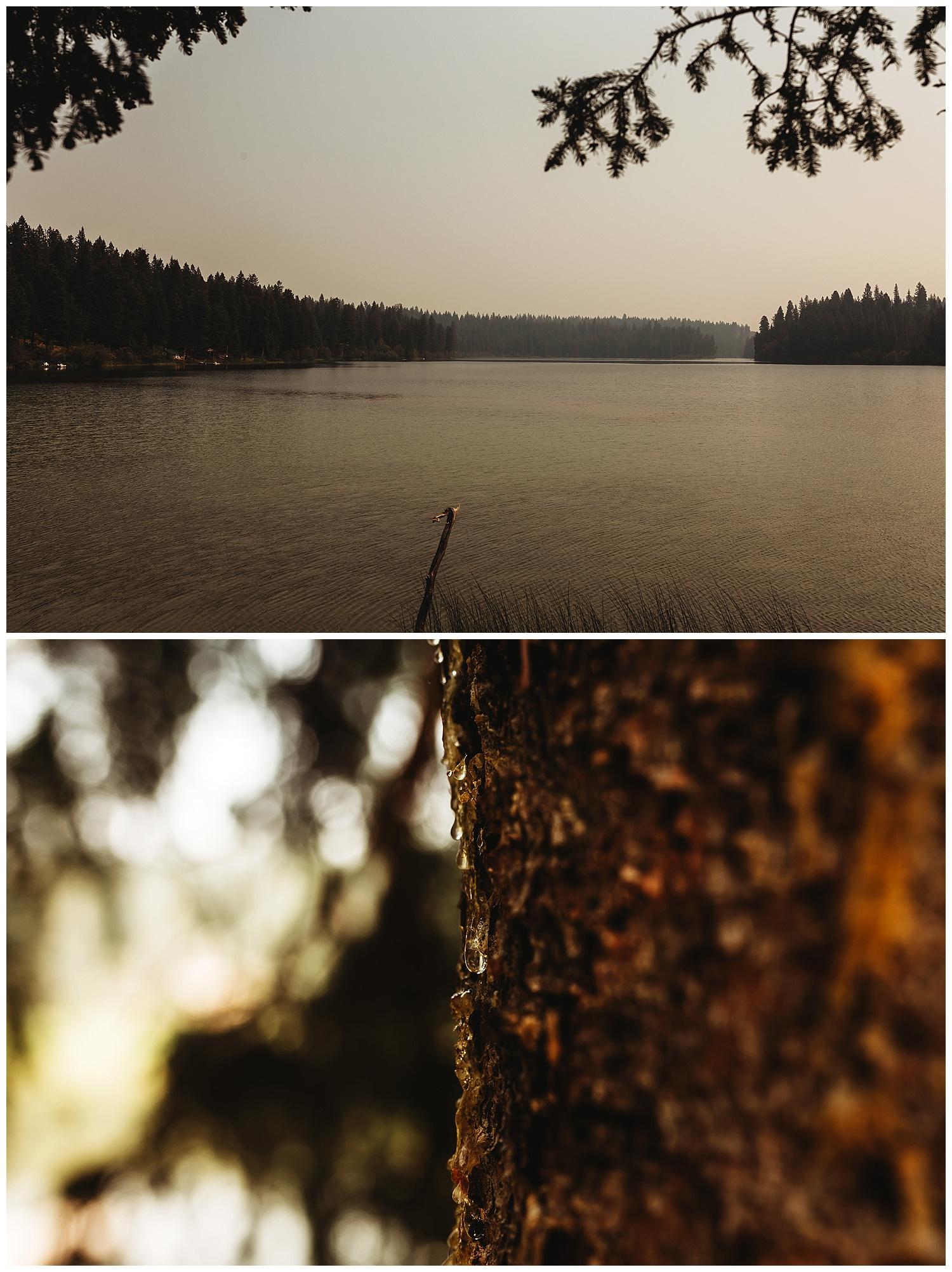 Fawn Lake_79.jpg
