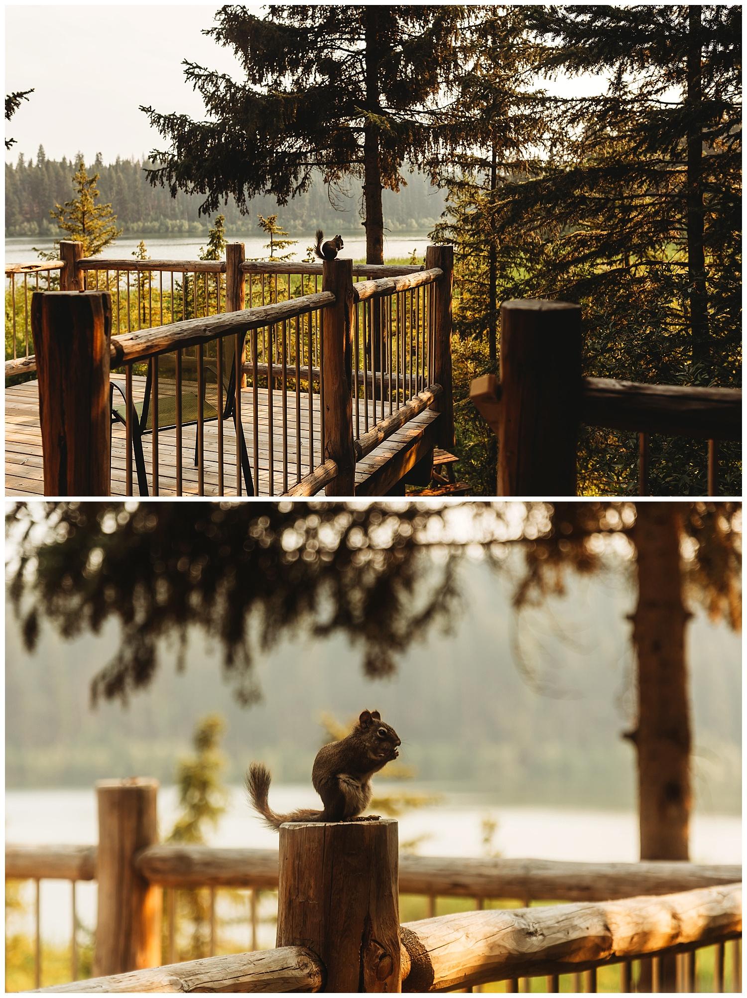 Fawn Lake_155.jpg