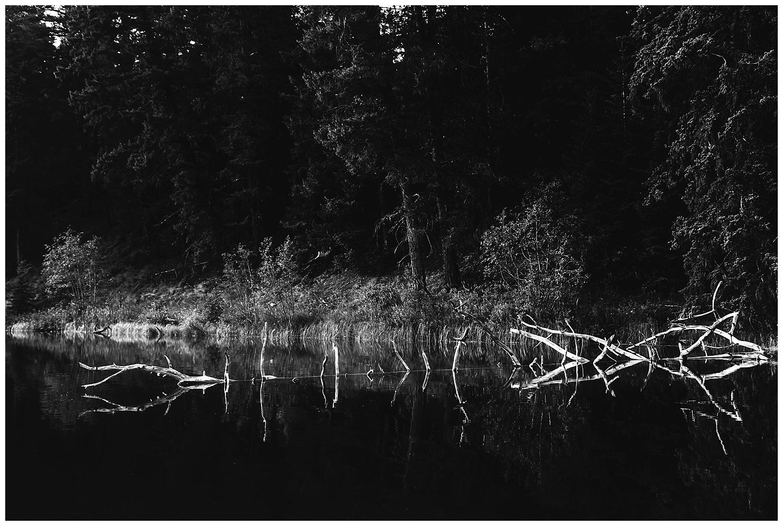 Fawn Lake_160.jpg