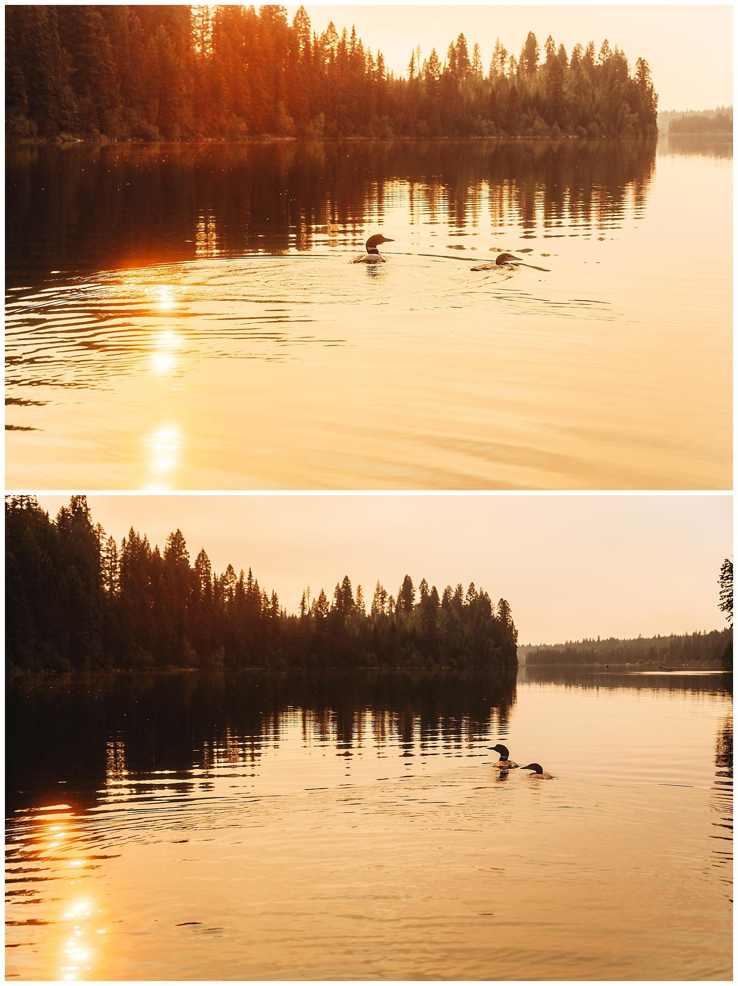 Fawn Lake_162.jpg
