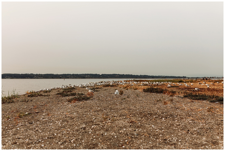 Crescent Beach Dress Shoot_32.jpg