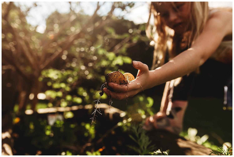 Anna Hurley Photography Summer Days_16.jpg
