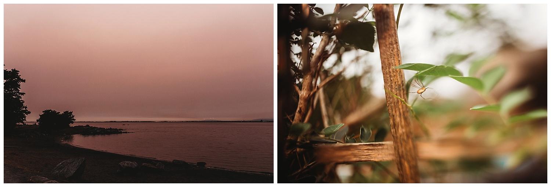 Anna Hurley Photography Summer Days_39.jpg