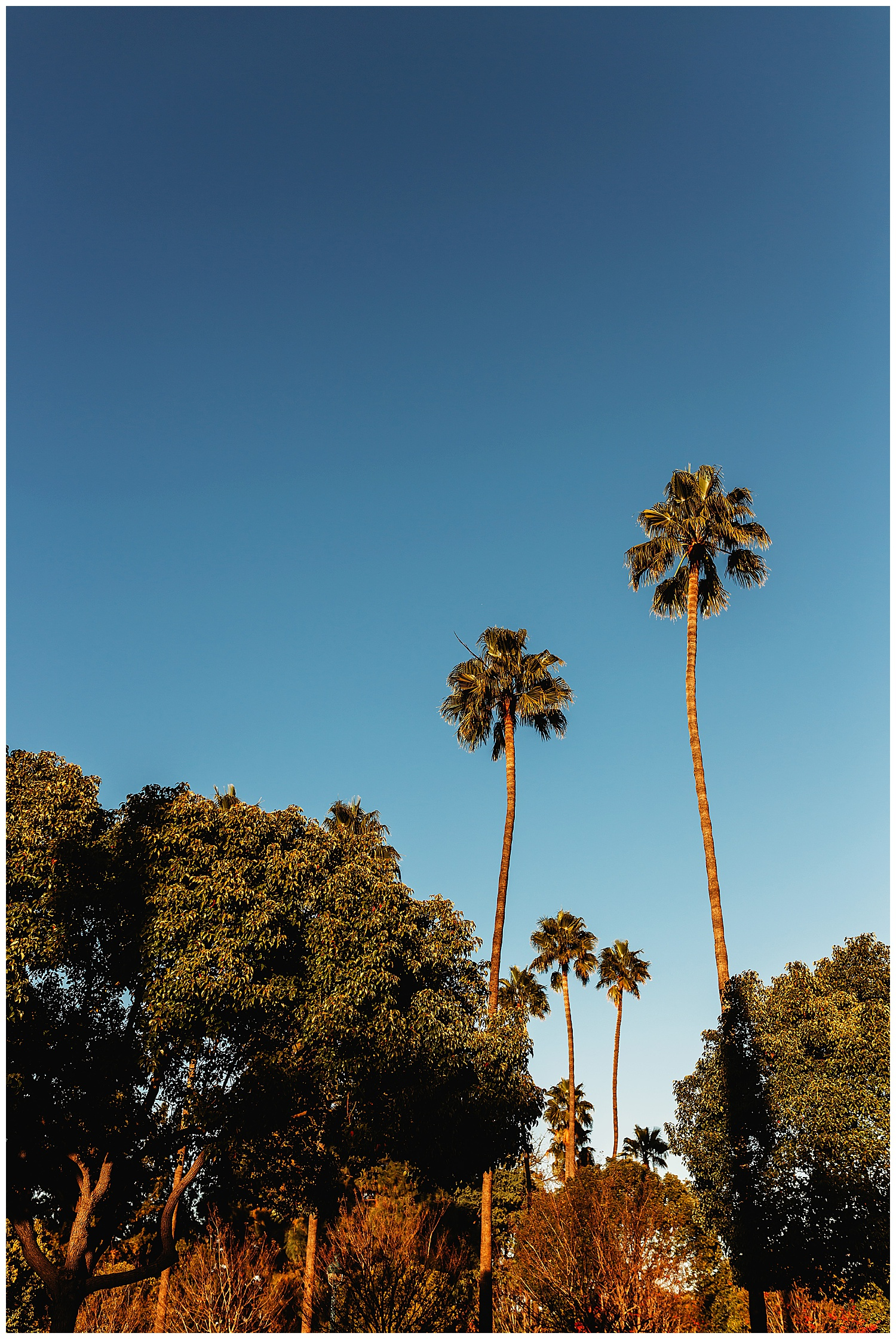 Anna Hurley Photography Chilliwack 111.jpg
