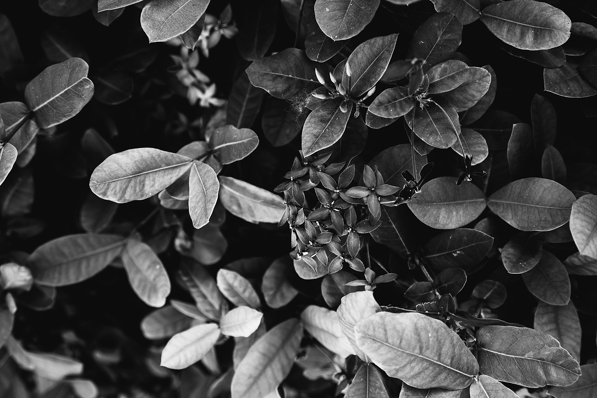Mexico Vacation 2019 Anna Hurley Photography 19.jpg