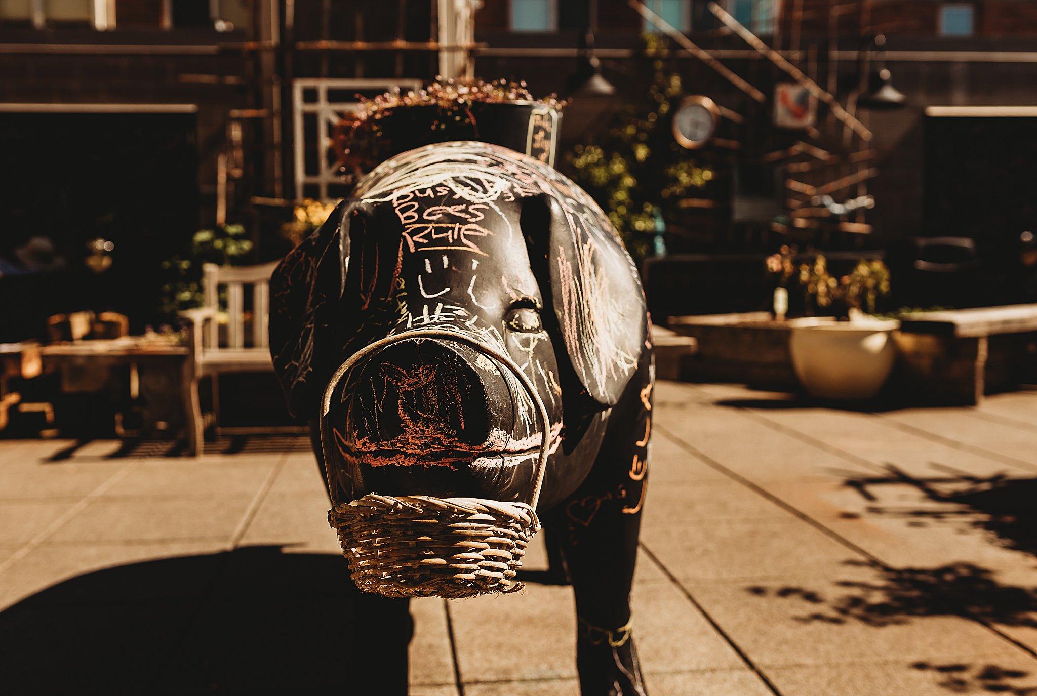 Seattle WA Anna Hurley Photography 5.jpg