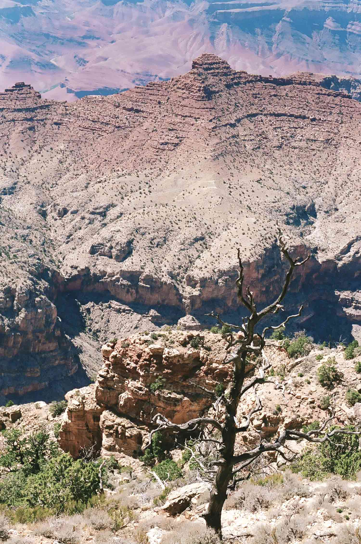 westcoastblog_arizona_6.jpg