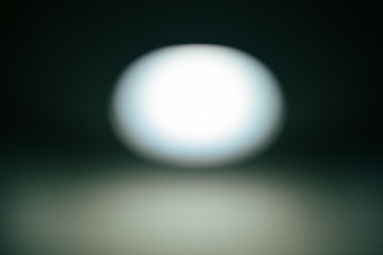 The Painter's Egg