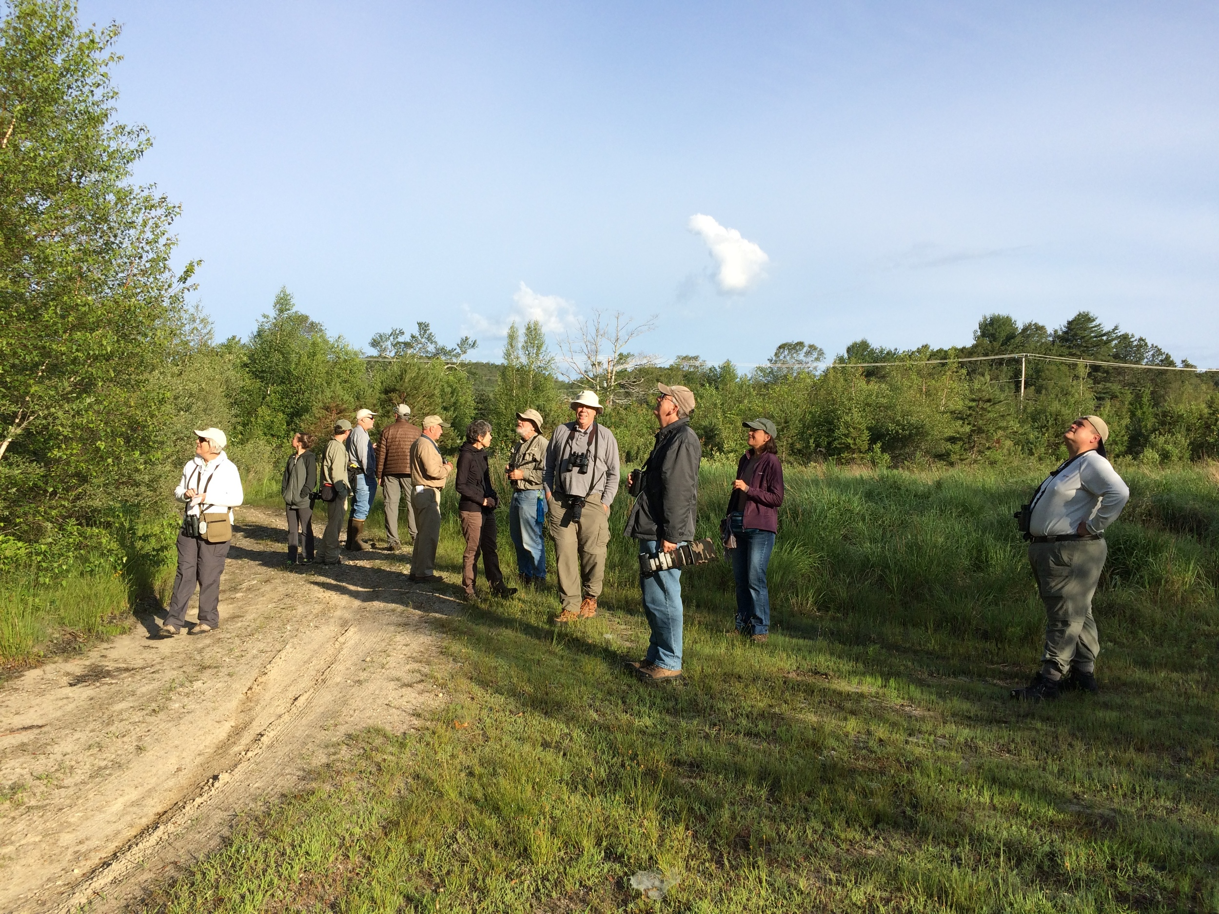 June 27, 2015 | Southeast Ma Bird Club lead by Steven Van der Veen