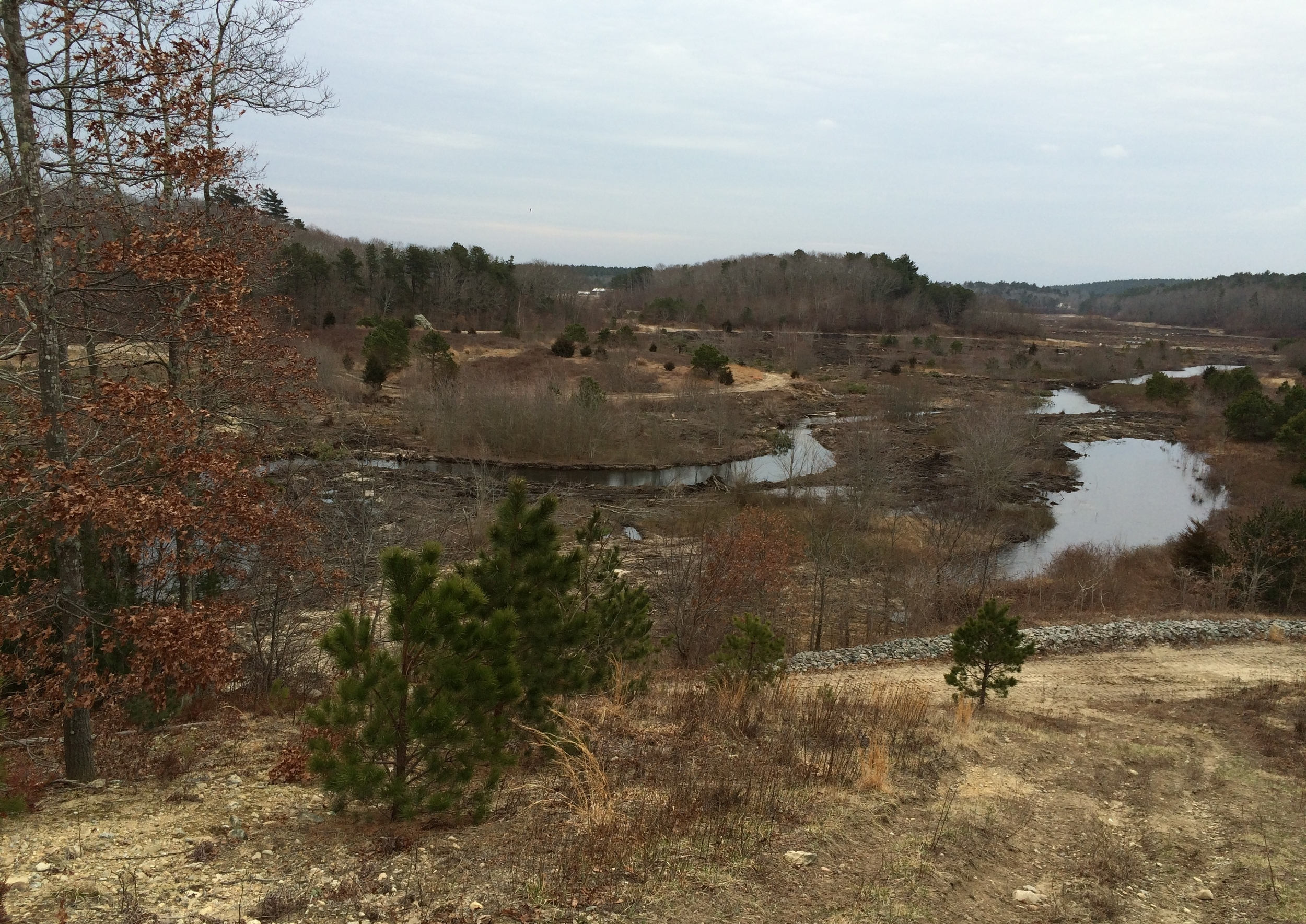 March 8, 2016 | Overview restoration site