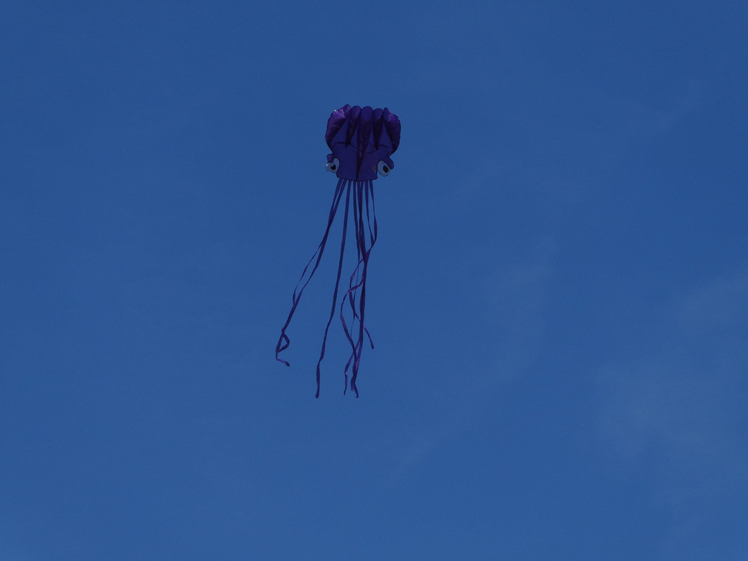 Jeff Warren Public Lab flies a kite.