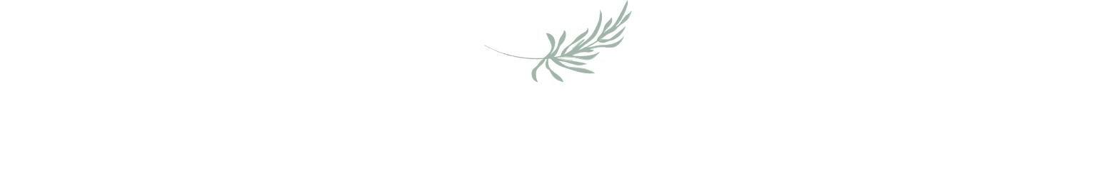 Palm Leaf Cropped.jpg