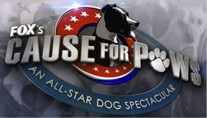 5_CauseForPaws.png