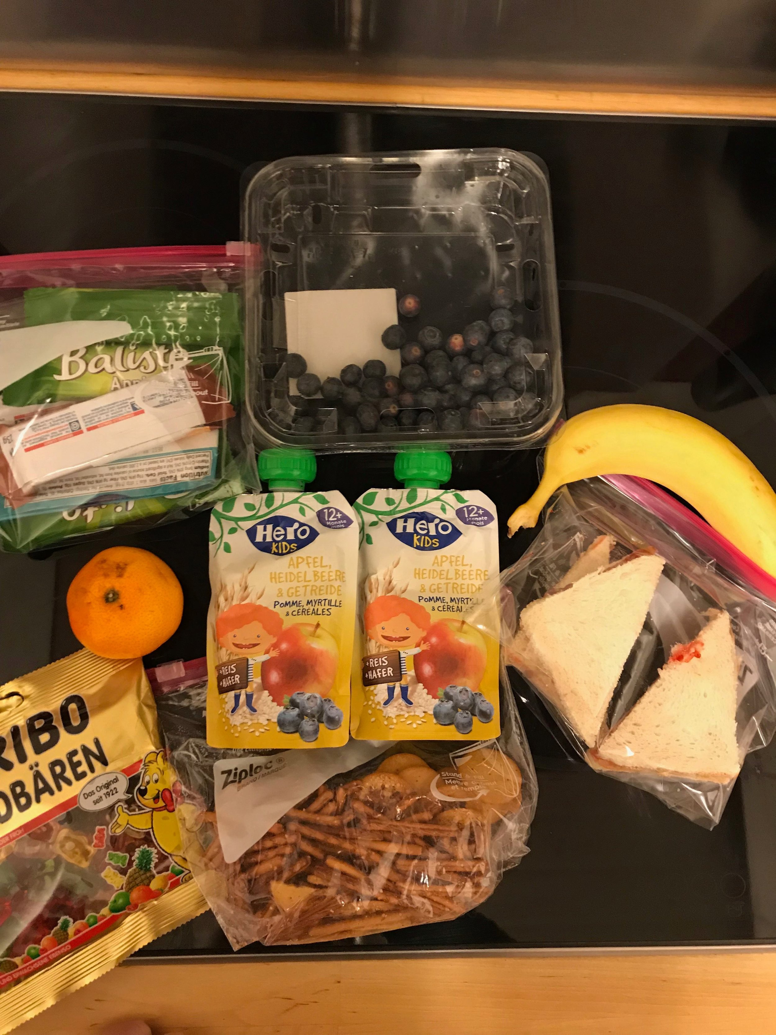 This is what we packed for a single Day outing for the kids -- sandiwches, fruit, pouches, pretzels and gummy bears for photo bribery