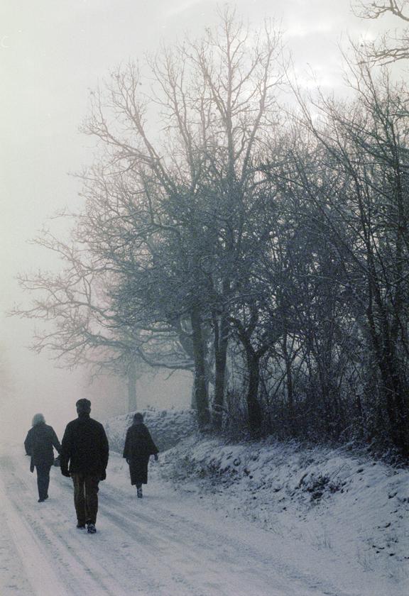 WALKING HOME CALES- 2008