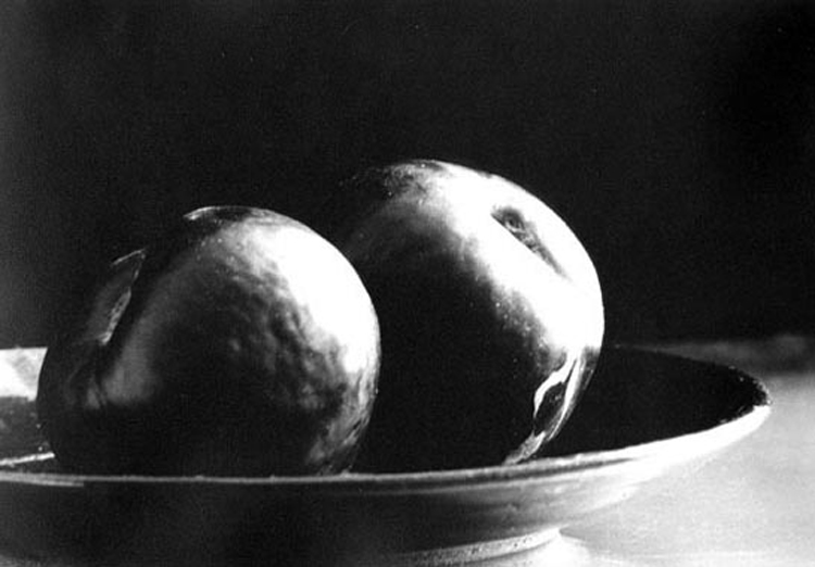 PLUMS ON A PLATE- 2004