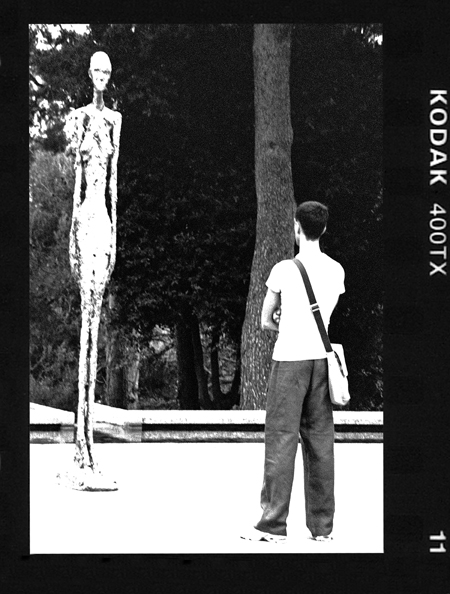 INTO THE WOODS- FONDATION MAEGHT- 2006