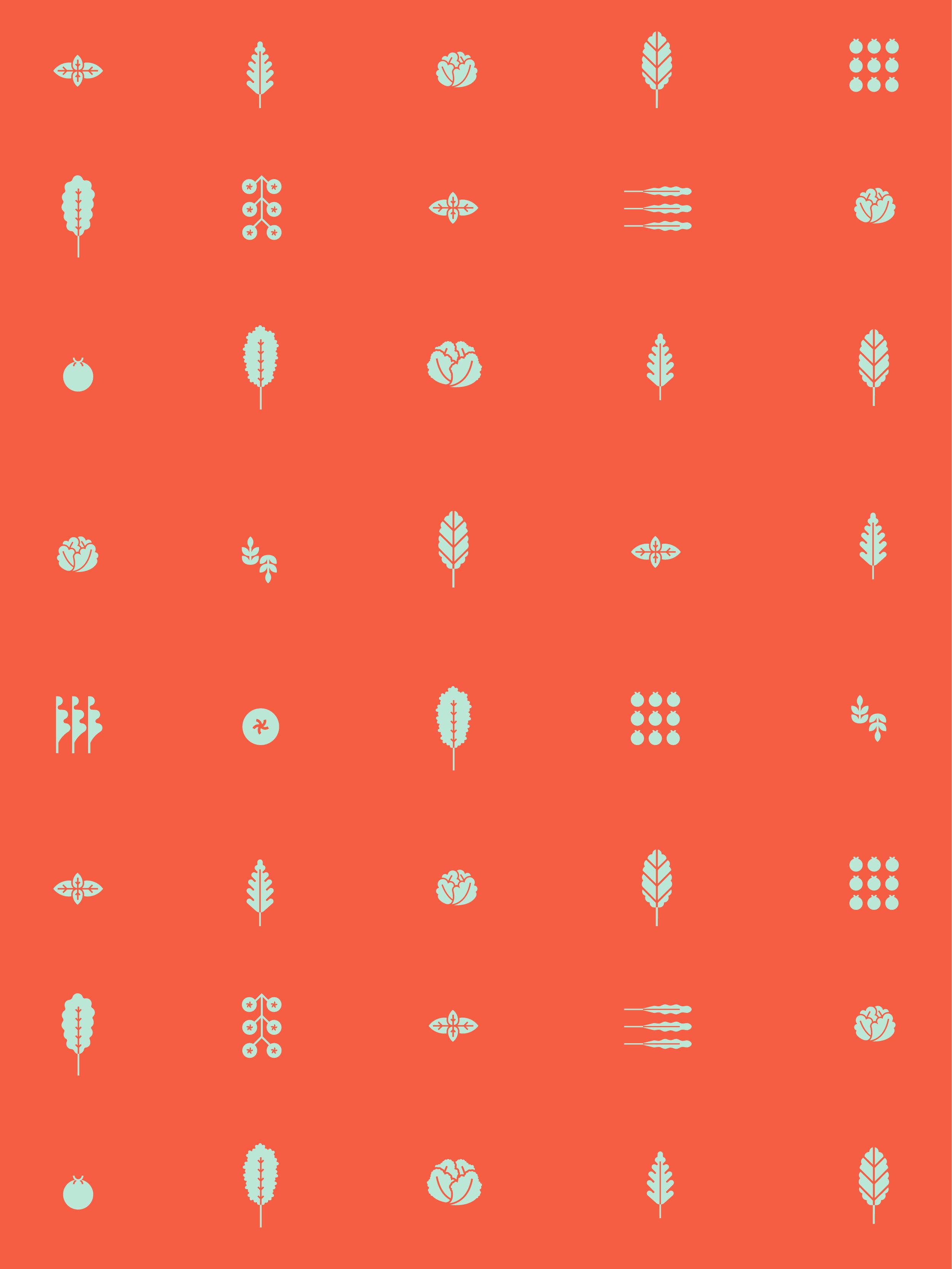 Kisano_Icons-01.jpg