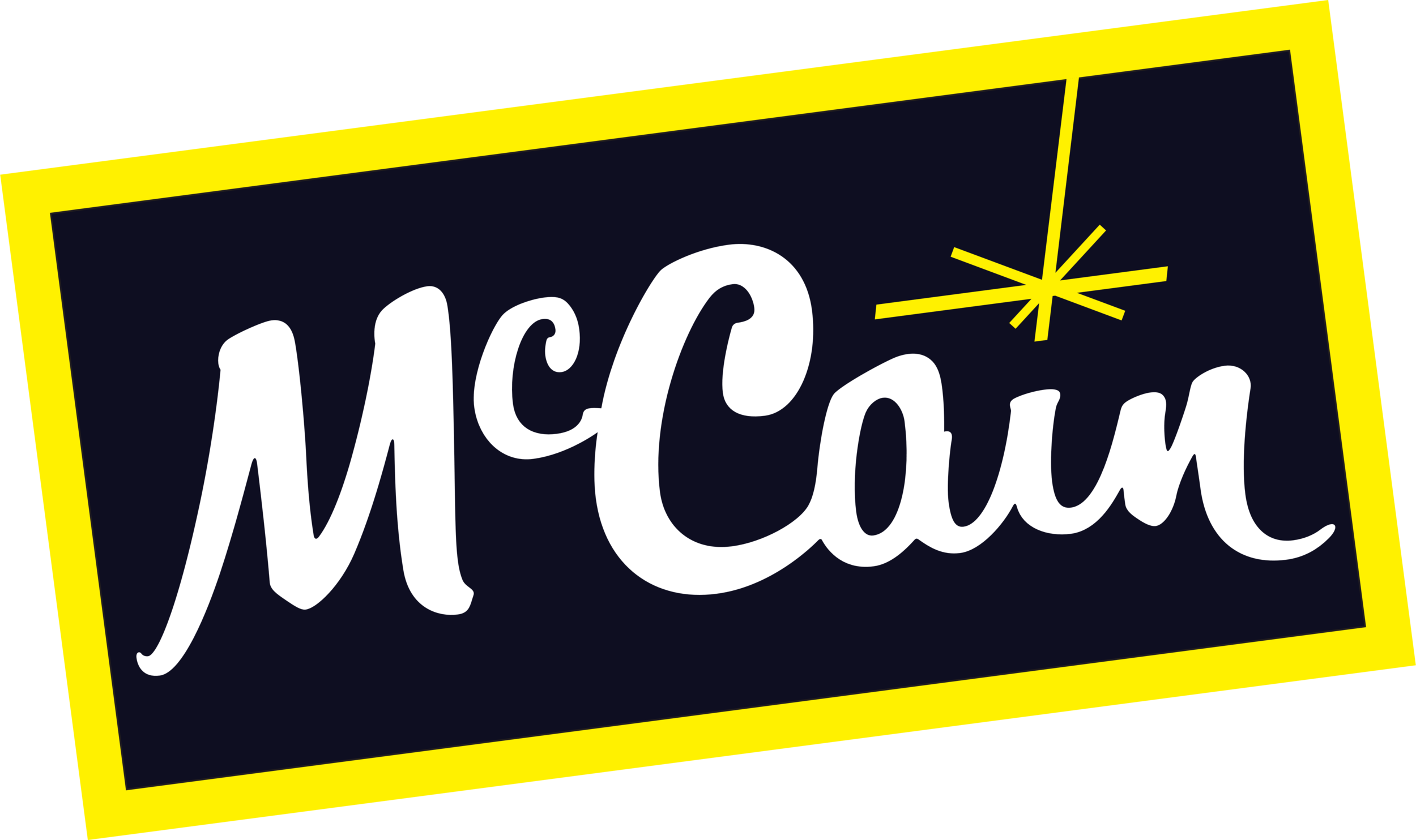 McCain_logo_logotype_international.png